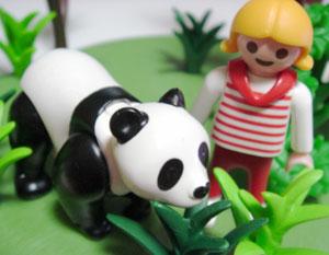 panda00.jpg